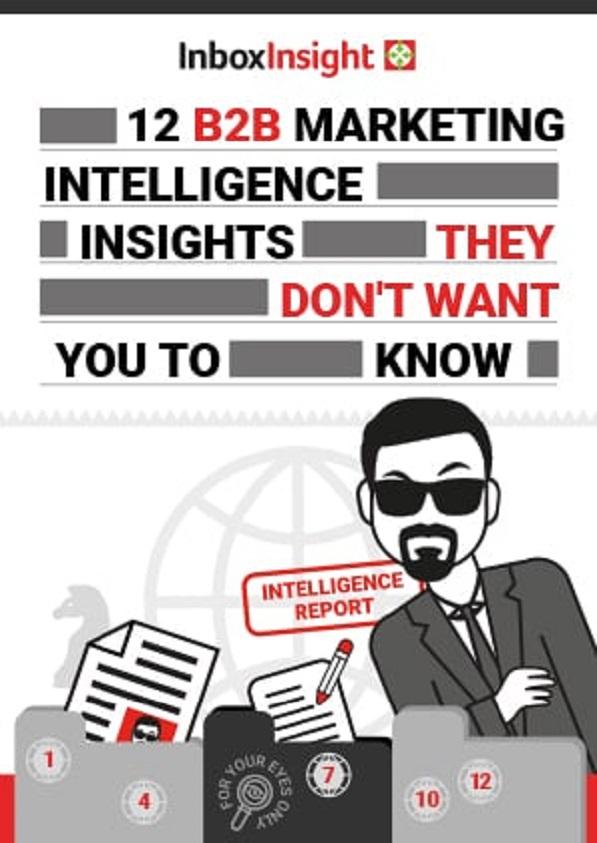 12 B2B Intelligence Insights_Additional Assets_V1_597x843